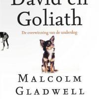 david-en-goliath